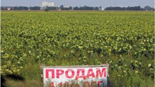 Официально украинская земля не продается, но почти вся она уже имеет владельцев