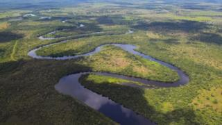 The Pantanal is the largest wetland on the planet located in Brazil, Bolivia and Paraguay