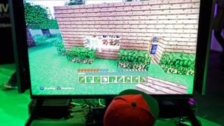 A child playing Minecraft