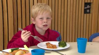 Child eating healthy meal