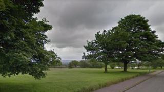 field on