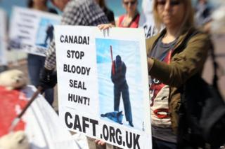 Protest against Canada's seal hunt