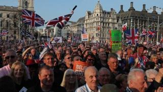Pro-Brexit protesters in Westminster
