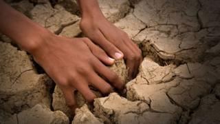 Hands in drought-ridden earth