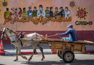 A man drives his horse-drawn cart past a mural thanking essential workers during pandemic, in the city of Salé.