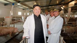 North Korean leader Kim Jong-un visits a pig farm on an airbase, according to a recent handout from the state news agency