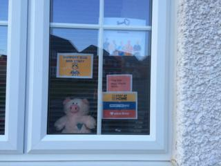 Toy pig in the window