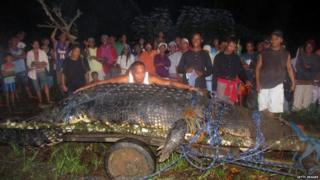 World's longest crocodile?