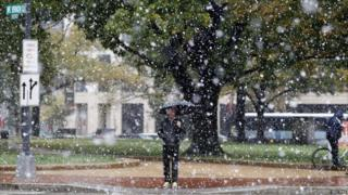 Snowfall in Washington DC.