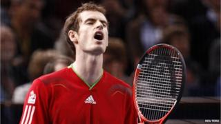 Andy Murray has lost in the quarter final of the Paris Masters.