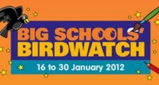 Big Schools Birdwatch logo