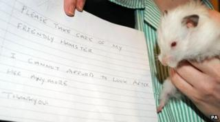 Snowball the abandoned hamster and the note left by her owner