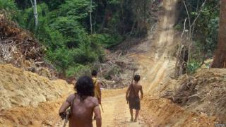 Awa men walk along a logging road