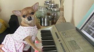Juileta can play the piano!