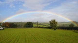A rainbow stretched across a field and trees.