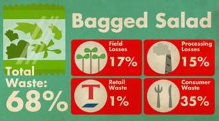 Bagged salad waste statistics