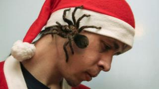 Man with spider on his face.