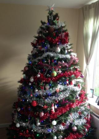 Isabella and Max in Manchester have sent us this snap of their neatly decorated tree