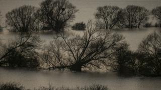 Flooded fields surrounding the River Tone that has burst its banks on the Somerset Levels.