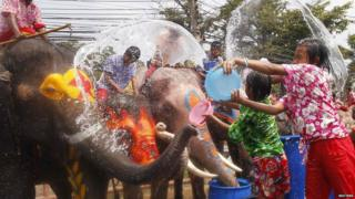 Children splash elephants with water