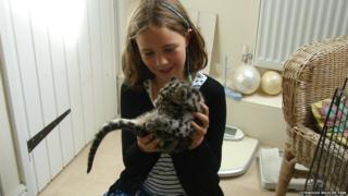 Nimbus the clouded leopard in a bathroom