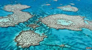 An aerial view of the Great Barrier Reef off the coast of Australia.