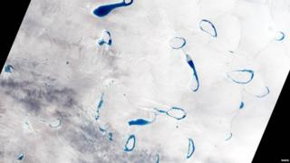 Melt Ponds in Greenland