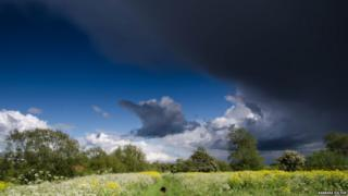 Dark clouds swirl in a blue sky. Below is a field where a black dog can be seen