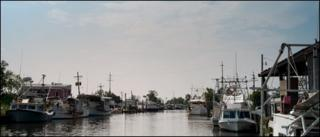 Fishing boats in Bayou La Loutre harbour