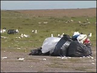 Rubbish in Dale