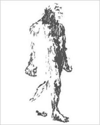 Big Grey Man. Pic: Carrbridge Films