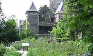 The Scottish Wildlife Trust's smallest reserve