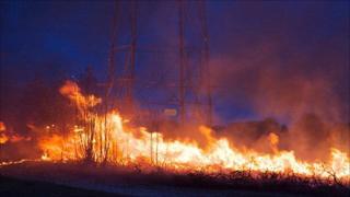 The Bloxworth Estate heath fires, Poole