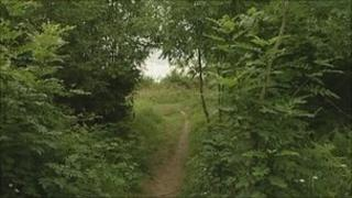 Woods, Cramlington