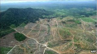 Aerial view of logged parts of Ketapang district, West Kalimantan 5 July 2010