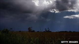 Florida Everglades (file)