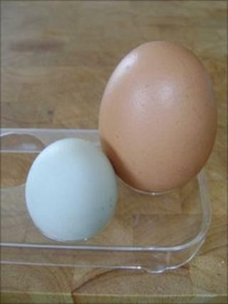 Large and small eggs
