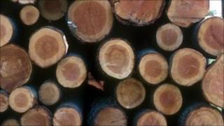 Logs generic