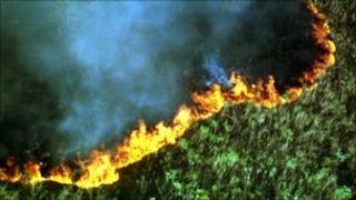 Forest burning near Serra dos Orgaos national park in Rio de Janeiro state, September 1999