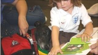 Batman the greyhound helps a child to read out loud