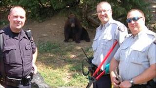 Canadian police with bears