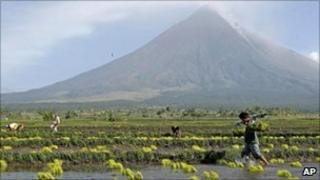 Farmers plant rice near the foot of Mayon volcano in central Philippines