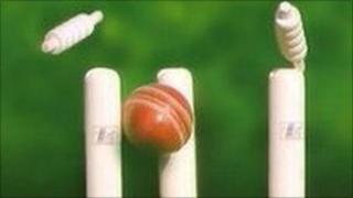 Cricket ball hitting the stumps