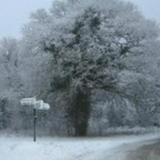 Snowy scene on the road between Winterborne Stickland and Blandford (picture taken by Carole Gill)