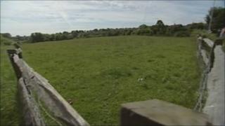 Pocock's Field