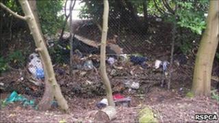 The wooded area in Thornycroft Lane in Basingstoke where Alfie was found