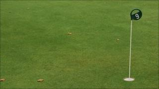 Golf green (Library)