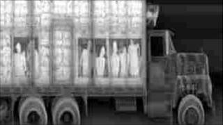 X-ray image of people being smuggled generic. Pic by Metropolitan Police