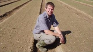 Pea farmer and Anglia Pea Growers chairman Richard Hirst
