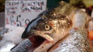Scottish salmon on sale